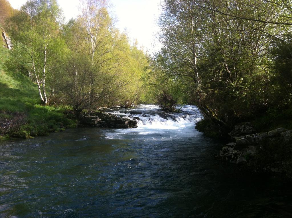 Río Navea
